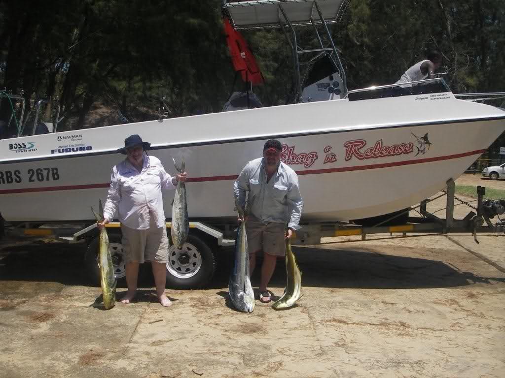 fish and boats